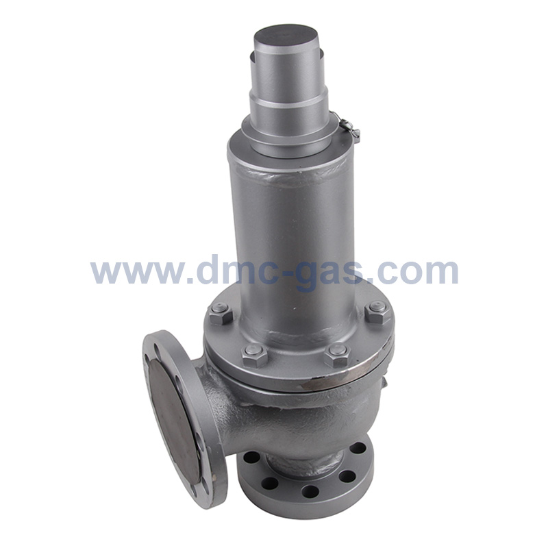 MS Miyairi LPG Relief Valve / Safety Valve